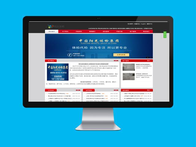 体检代检营销网站建设+SEO优化推广